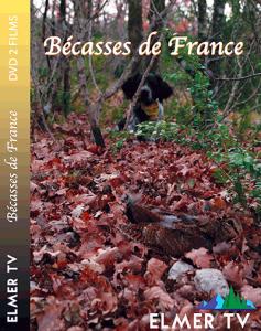 Bécasses de France