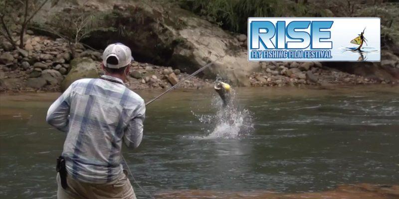 Rise Film Festival, la pêche à la mouche sur grand écran